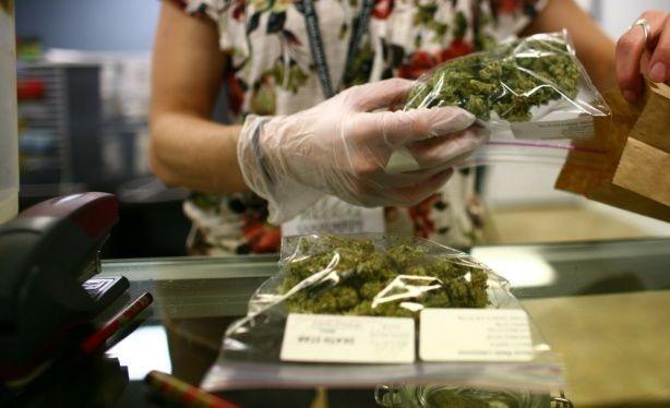Ley 27.350: Uso Medicinal de la Planta de Cannabis y sus derivados
