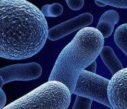 """""""Resistencia de los gérmenes a los Antimicrobianos: Situación Actual"""""""