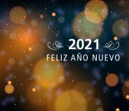 Brindamos con ustedes por un gran 2021!